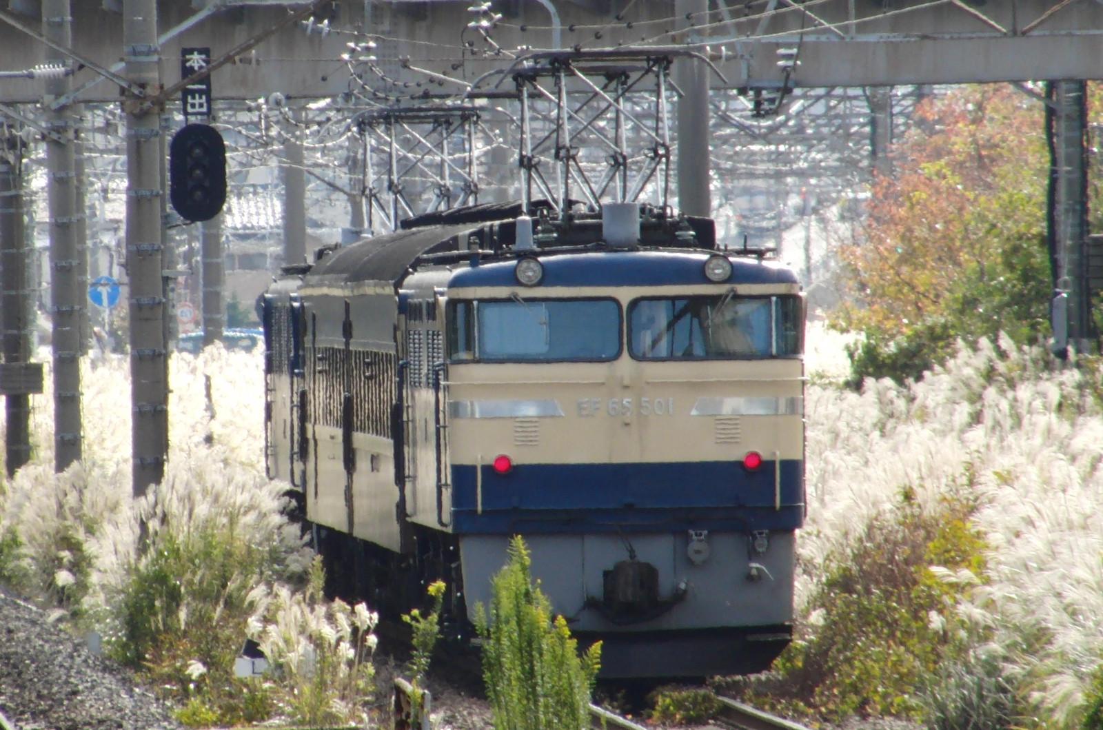 Cimg0236
